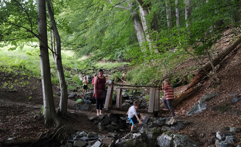 7 Tipps der NaturFreunde Thüringen für das Neue Wandern