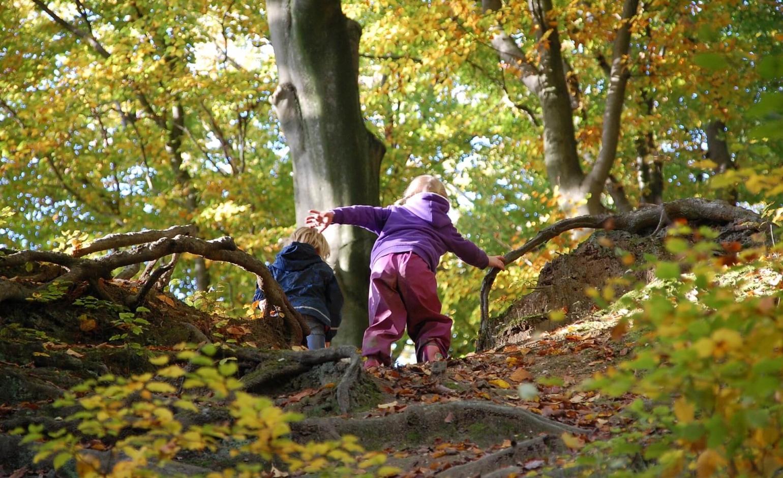 "Naturfreundehaus ""Thüringer Wald"" – Kids, Bild 1"